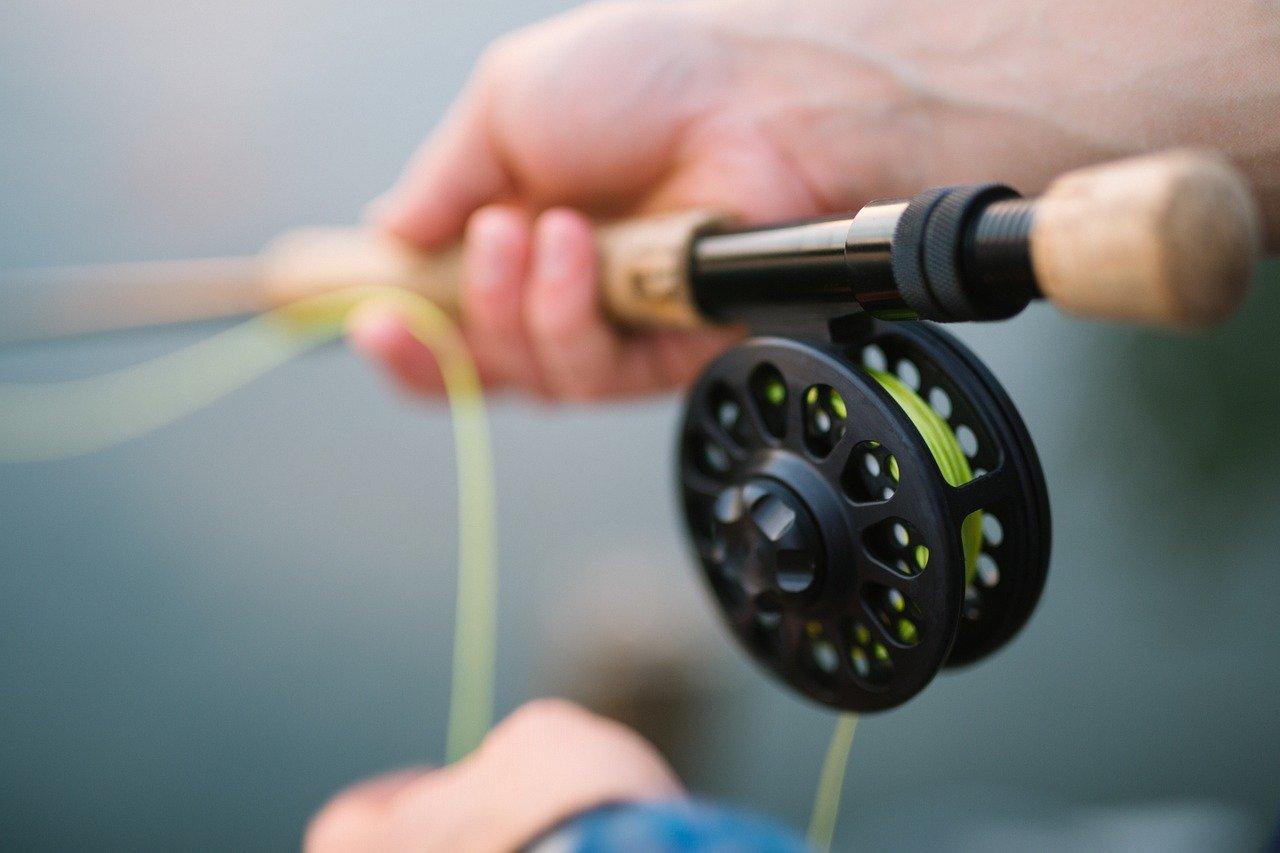 Fiske i Stockholm