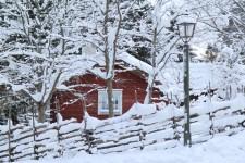 Fira jul på Skansen i Stockholm