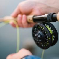 Testa fiske i Stockholm